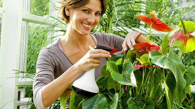 Środki pomocnicze do pielęgnacji i ochrony roślin cz.2