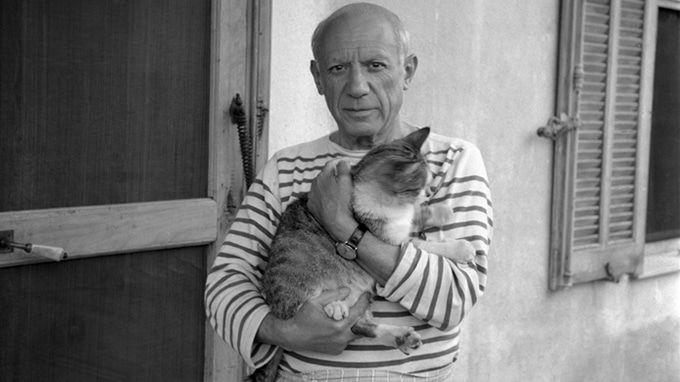 Cat 'Punny' Names Pablo Picatso
