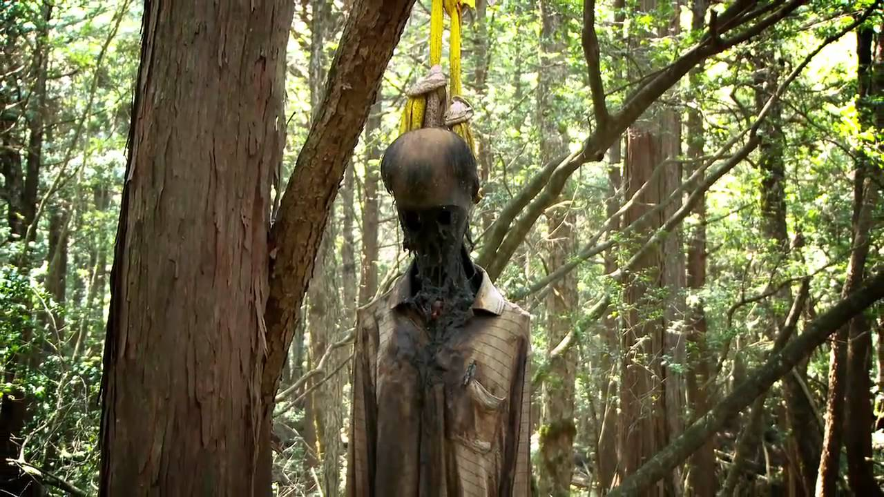 Aokigahara Suicide Forest – Japan