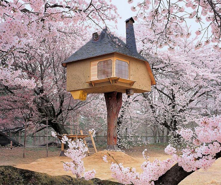 tetsu tree house japan source treehouselovecom