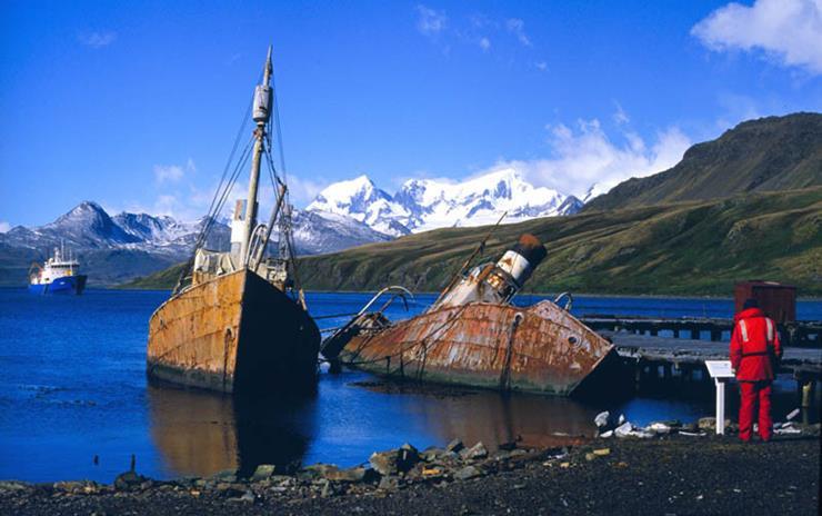 Shipwreck at Grytviken South Georgia