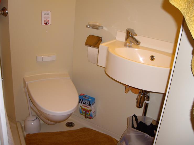 Bathroom stinks