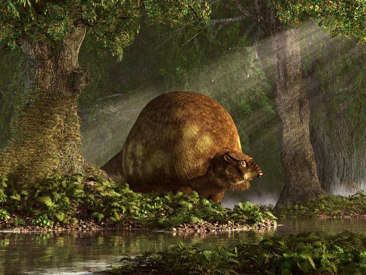 Glyptodon Fossil Story