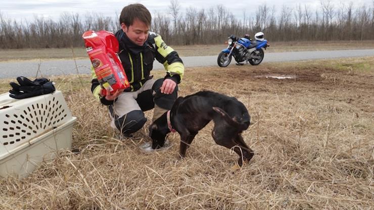 Bikers Rescue Dog