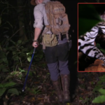 This Vicious Predator Pounced On A Jungle Explorer: What Happened Next Was Life Changing