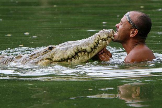 Pocho Crocodile Story