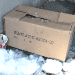 Puppy Found In A Box In The Snow Makes An Unbelievable Comeback