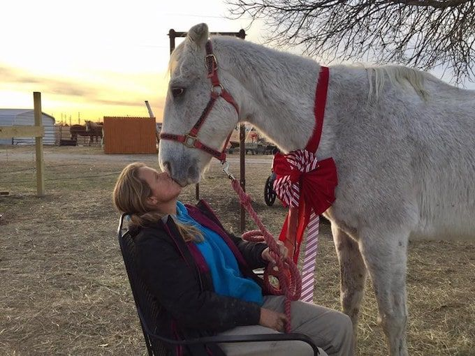 Credit: Becky's Hope Horse Rescue