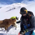 Snowboarders Rescue Stranded Horse From Freezing To Death On A Mountain
