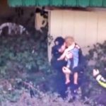 Cops Find Missing Toddler In Prickly Blackberry Bush After Disappearing At Night