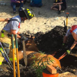 Firefighters Save 25-Year-Old Horse Drowning In A Mud Pit