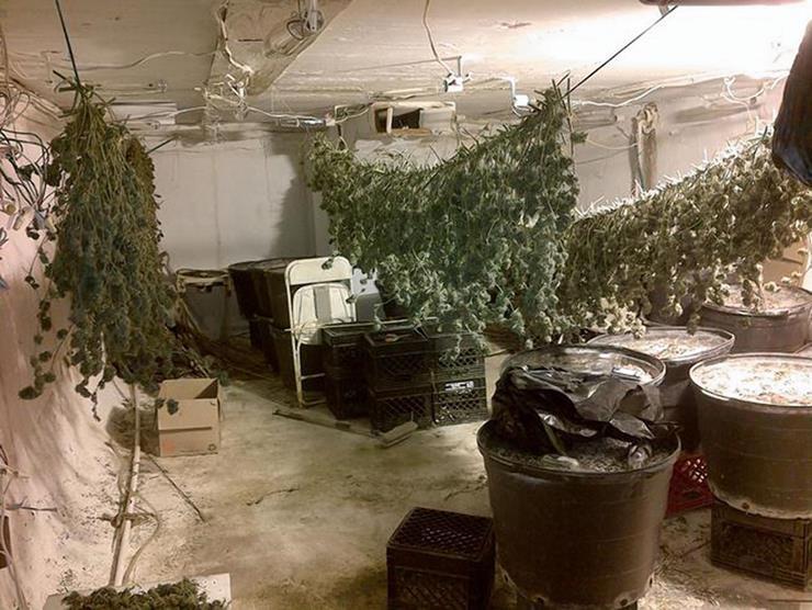 Miami-Dade Drug Bust