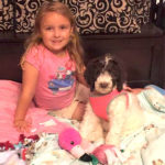 Stranger Donates Service Dog To 5-Year-Old With Arthritis
