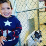 4-Year-Old Uses His Savings To Rescue Two Dogs At Animal Shelter