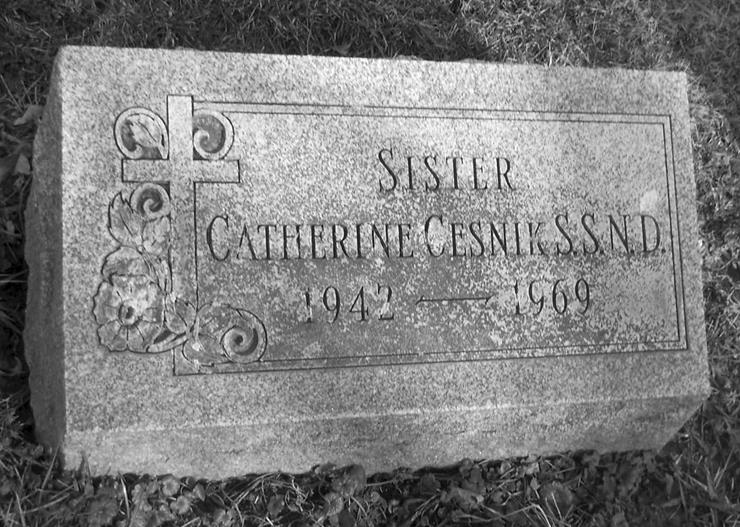 Catherine Cesnik Story