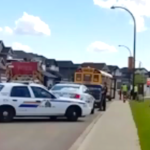 Dad Saves Bus Full Of Kids From Impaired Driver