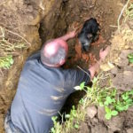 Man Finds Dog Trapped In Pipe For 19 Long Hours