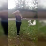 Teen Is Caught On Camera Viciously Swinging Dog By Neck