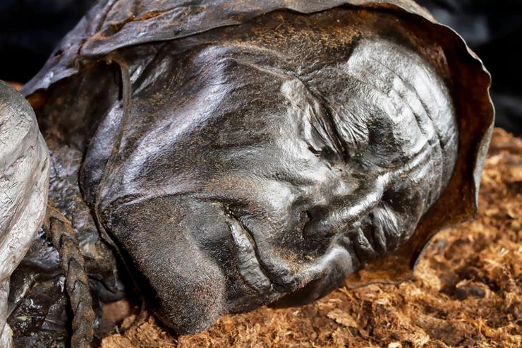 Tollund Man Discovery