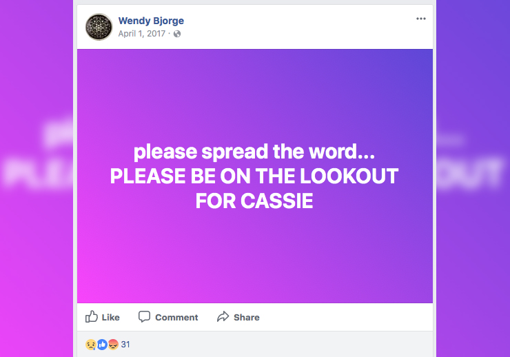 Cassie Bjorge Story