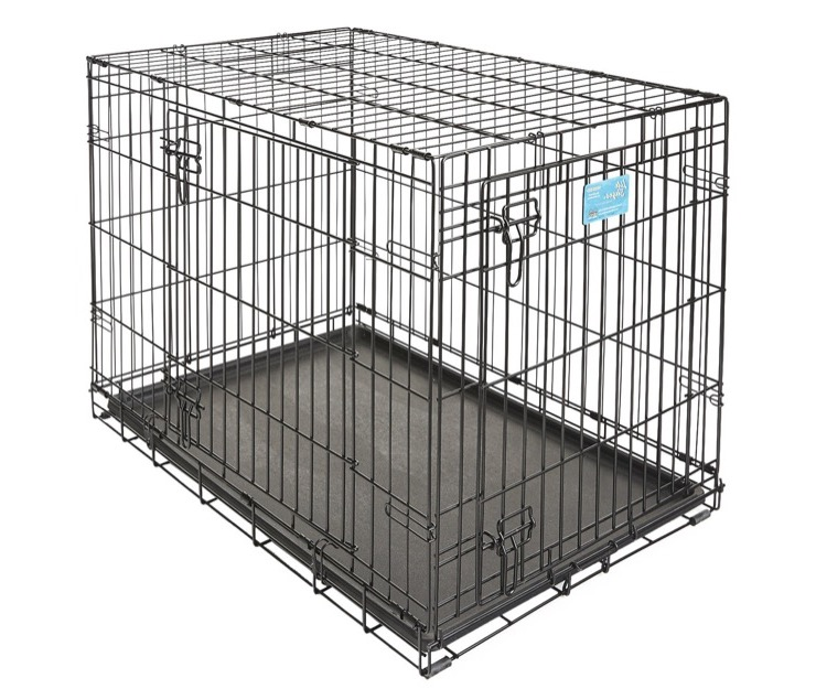 Dog Suddenly Barking In Crate At Night