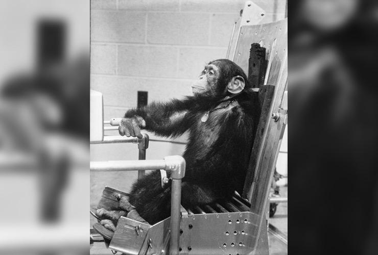 Ham the Chimp Story