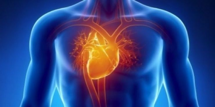 Heart Attack Warning Signs Story