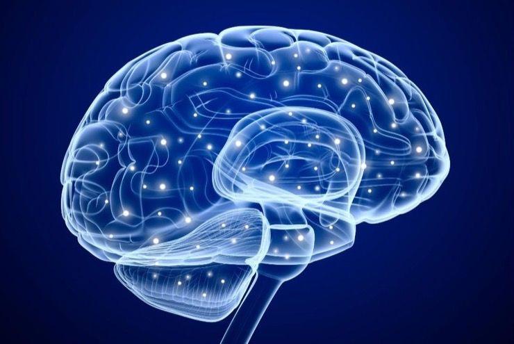 Schizophrenia Myths Story