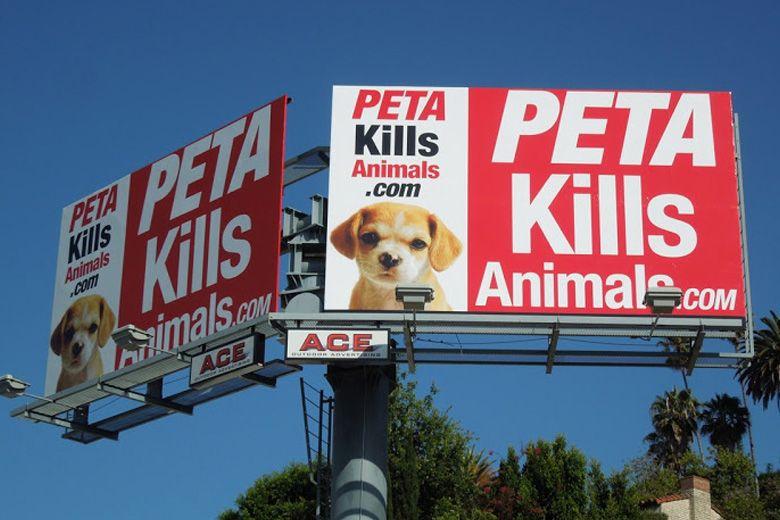 PETA Story