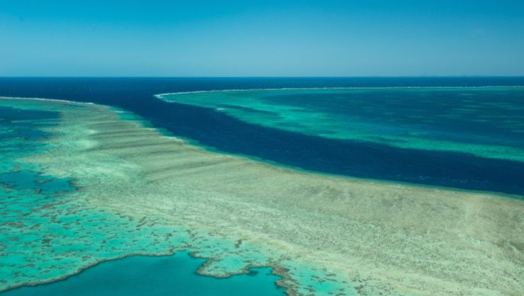 Great Barrier Reef Story