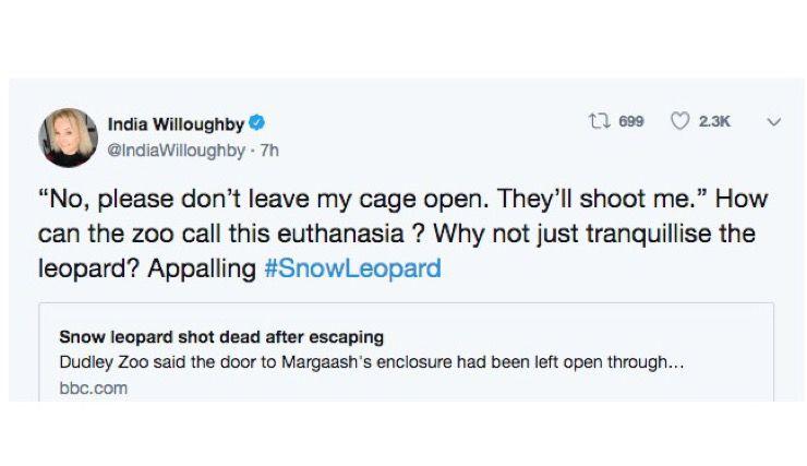 Snow Leopard Story
