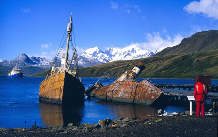 Shipwreck at Grytviken South Georgia