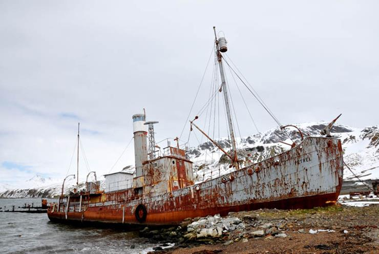 Shipwreck at Grytviken