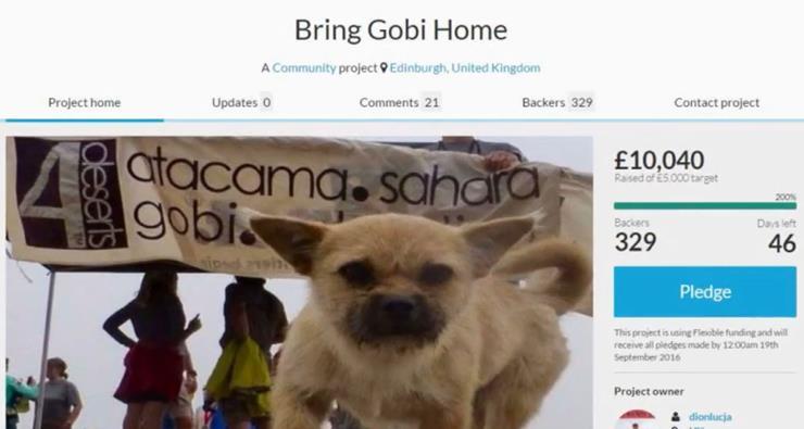 Gobi Story