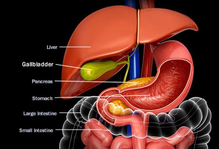 Gallbladder Story
