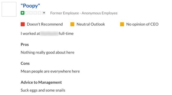 Funny Glassdoor Reviews